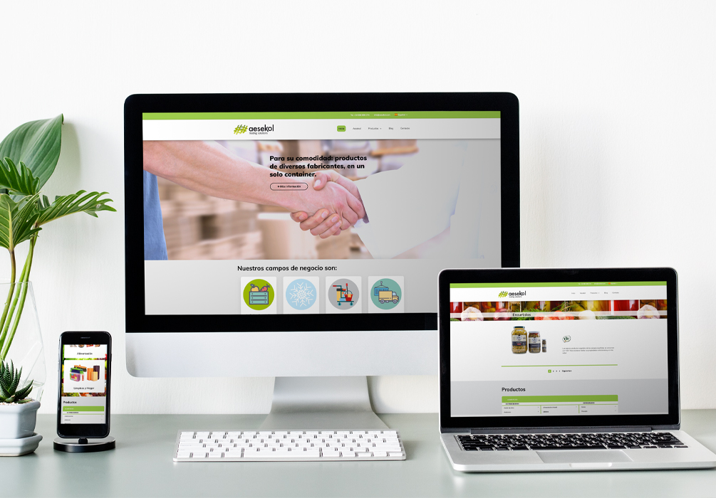 Página Web Aesekol