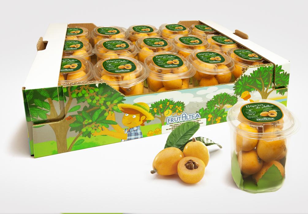 Packaging Frutaltea